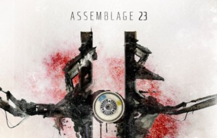 assemblage23
