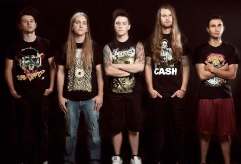 rings of saturn - bandpicture