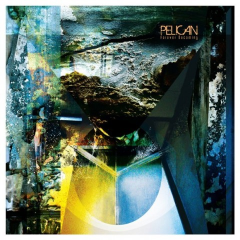 pelican-foreverbecoming