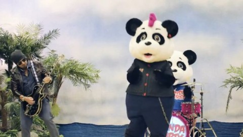 phil-campbell-working-on-panda-party-kids-project-happy-birthday-video-posted-image