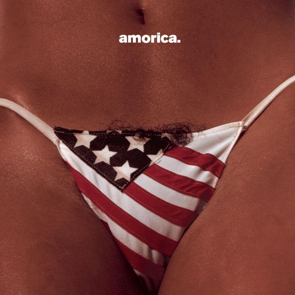 black-crowes-amorica-censura